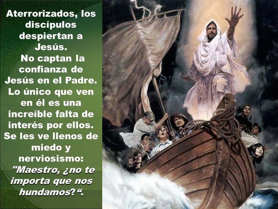 Aterrorizados, los discípulos despiertan a Jesús.No captan la confianza de Jesús en el Padre.