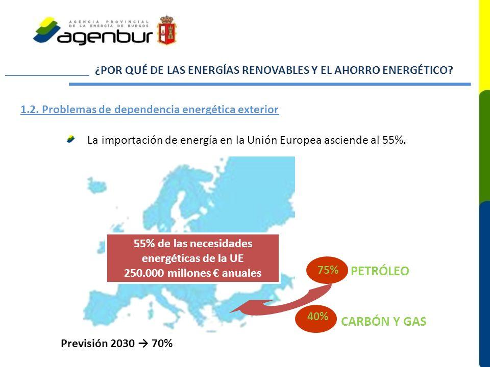 ¿POR QUÉ DE LAS ENERGÍAS RENOVABLES Y EL AHORRO ENERGÉTICO? 1.2. Problemas de dependencia energética exterior La importación de energía en la Unión Eu