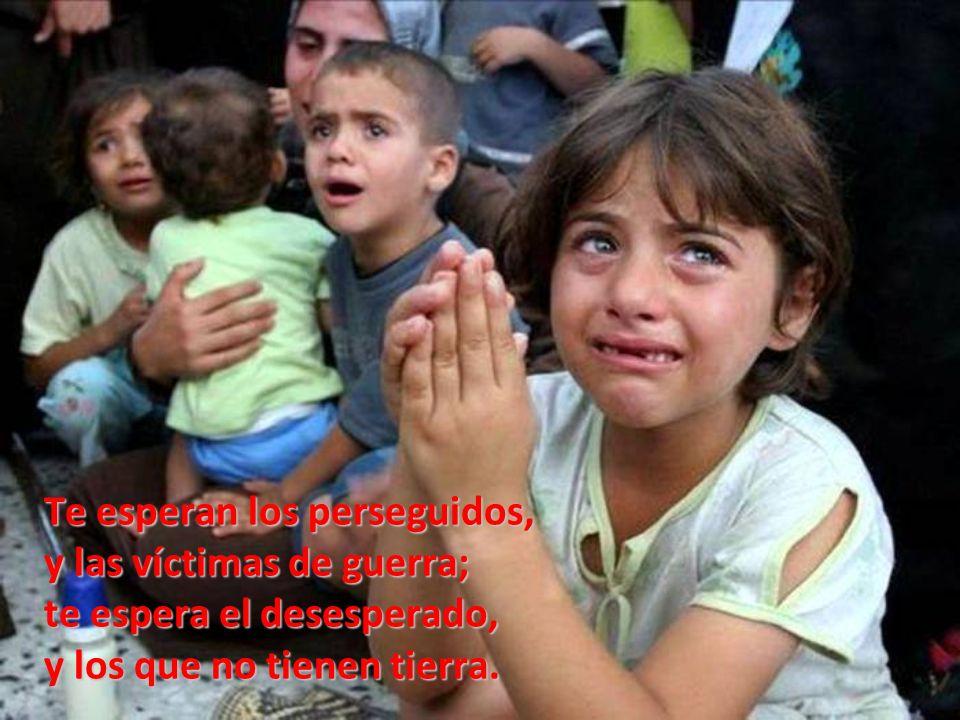 Te espera el niño mendigo, ambulante y sin defensa; te espera el preso inocente, que entre lágrimas te reza.