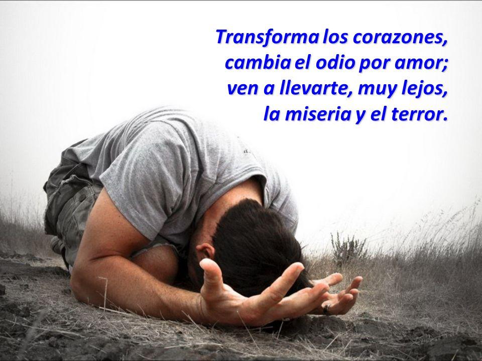 Transforma los corazones, cambia el odio por amor; ven a llevarte, muy lejos, la miseria y el terror.