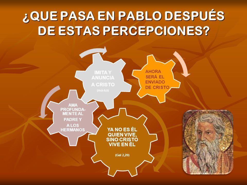 ¿QUE PASA EN PABLO DESPUÉS DE ESTAS PERCEPCIONES? YA NO ES ÉL QUIEN VIVE, SINO CRISTO VIVE EN ÉL (Gal 2,20) AMA PROFUNDA- MENTE AL PADRE Y A LOS HERMA