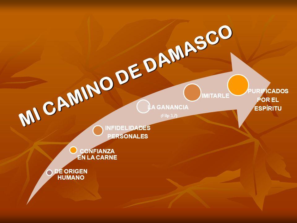 MI CAMINO DE DAMASCO DE ORIGEN HUMANO INFIDELIDADES PERSONALES LA GANANCIA CONFIANZA EN LA CARNE IMITARLE PURIFICADOS POR EL ESPÍRITU ( Filp 3,7)