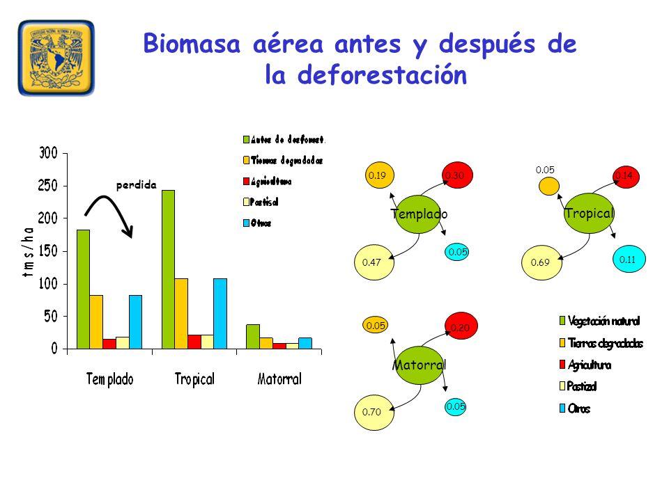 Biomasa aérea antes y después de la deforestación perdida 0.190.30 0.47 0.05 Templado 0.05 0.14 0.69 0.11 Tropical 0.05 0.20 0.70 0.05 Matorral