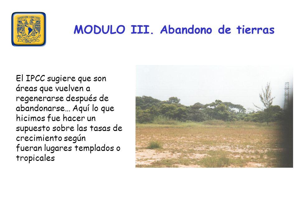 MODULO III. Abandono de tierras El IPCC sugiere que son áreas que vuelven a regenerarse después de abandonarse… Aquí lo que hicimos fue hacer un supue