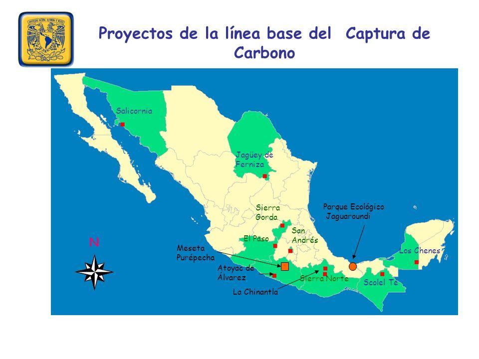 Proyectos de la línea base del Captura de Carbono Salicornia Atoyac de Álvarez Los Chenes La Chinantla Sierra Norte Sierra Gorda Jagüey de Ferniza El