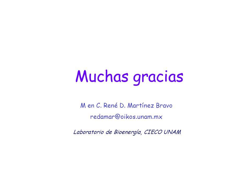 Muchas gracias M en C. René D. Martínez Bravo redamar@oikos.unam.mx Laboratorio de Bioenergía, CIECO UNAM