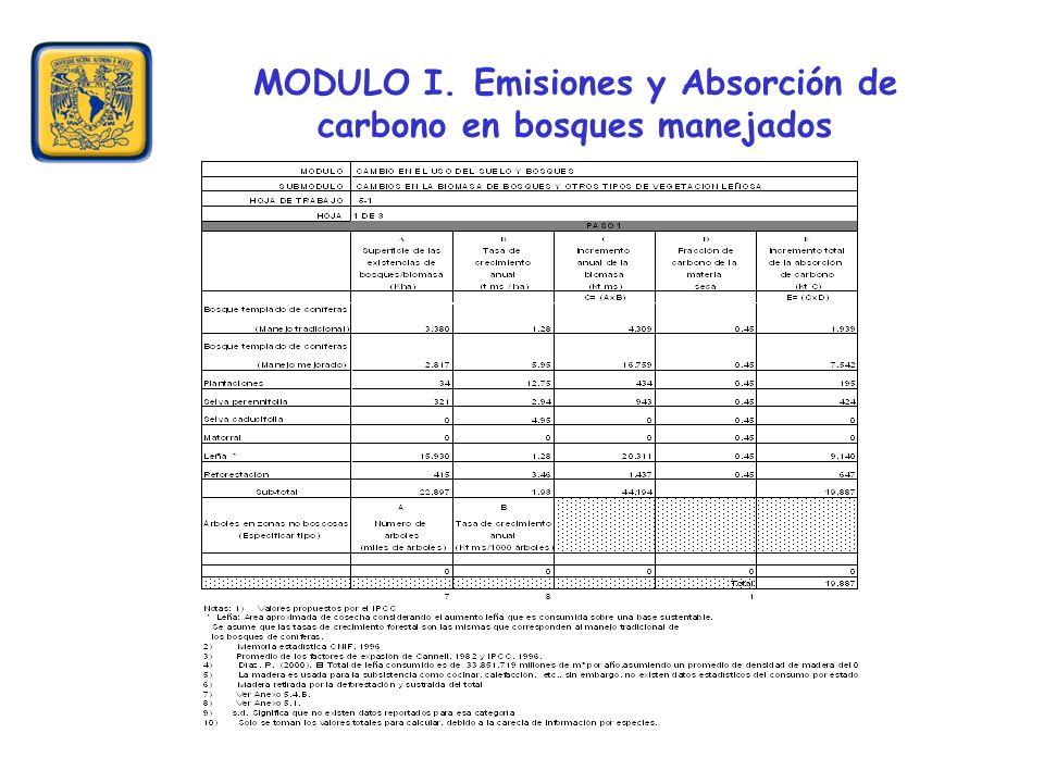 MODULO I. Emisiones y Absorción de carbono en bosques manejados