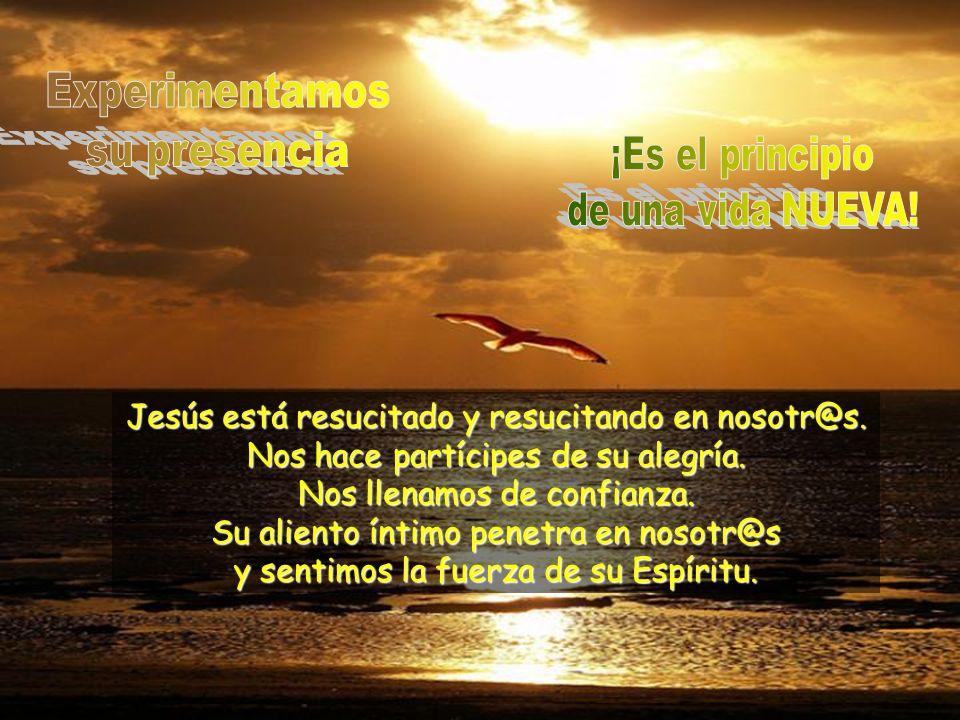 Jesús no está en el sepulcro. Está aquí, ahora, en medio de nosotr@s. Nos quita los miedos, nos da su paz y nos reparte el pan.