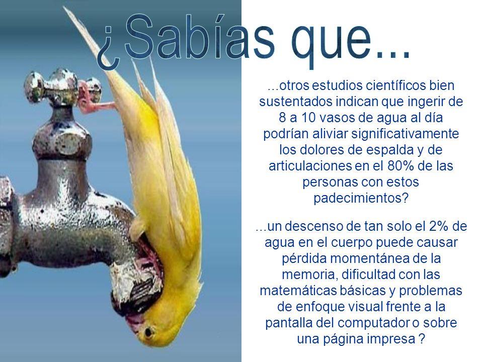 ...otros estudios científicos bien sustentados indican que ingerir de 8 a 10 vasos de agua al día podrían aliviar significativamente los dolores de es