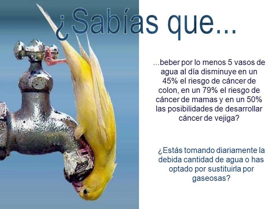 ...beber por lo menos 5 vasos de agua al día disminuye en un 45% el riesgo de cáncer de colon, en un 79% el riesgo de cáncer de mamas y en un 50% las posibilidades de desarrollar cáncer de vejiga.