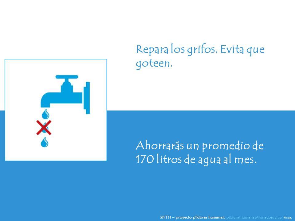 Repara los grifos. Evita que goteen. Ahorrarás un promedio de 170 litros de agua al mes.