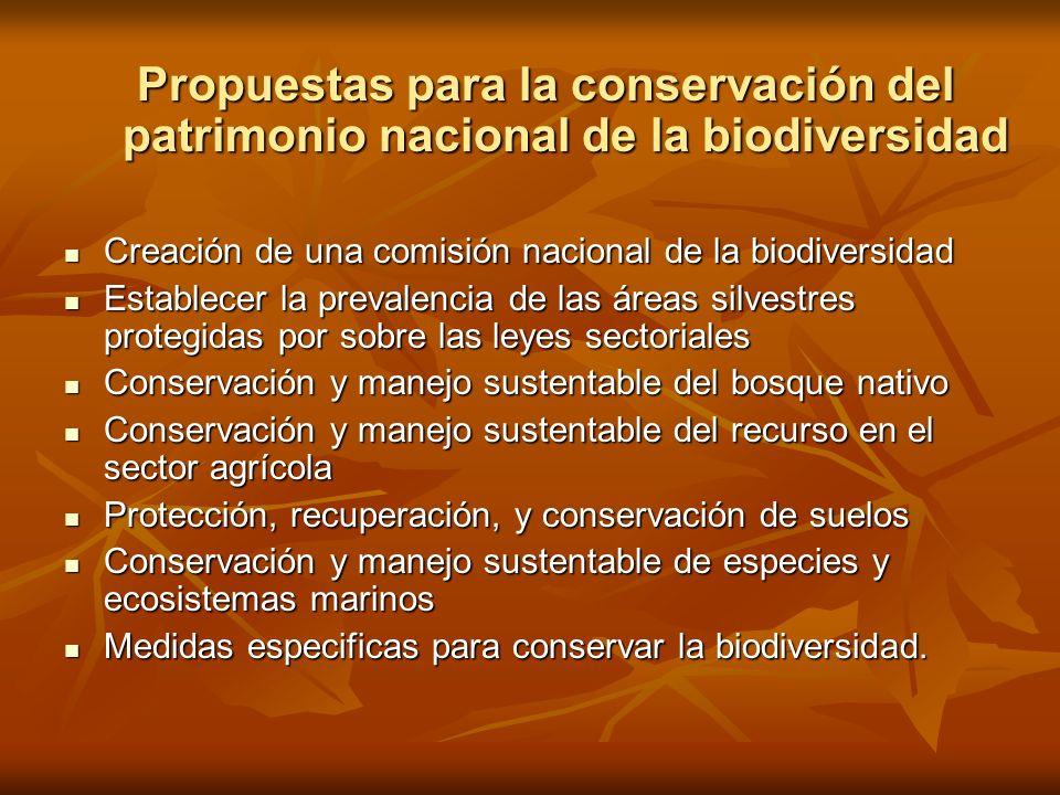 Propuestas para la conservación del patrimonio nacional de la biodiversidad Creación de una comisión nacional de la biodiversidad Creación de una comi