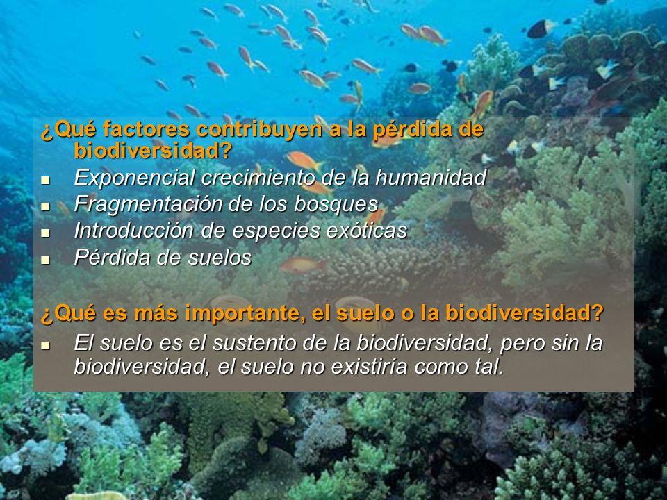 ¿Qué factores contribuyen a la pérdida de biodiversidad? Exponencial crecimiento de la humanidad Exponencial crecimiento de la humanidad Fragmentación