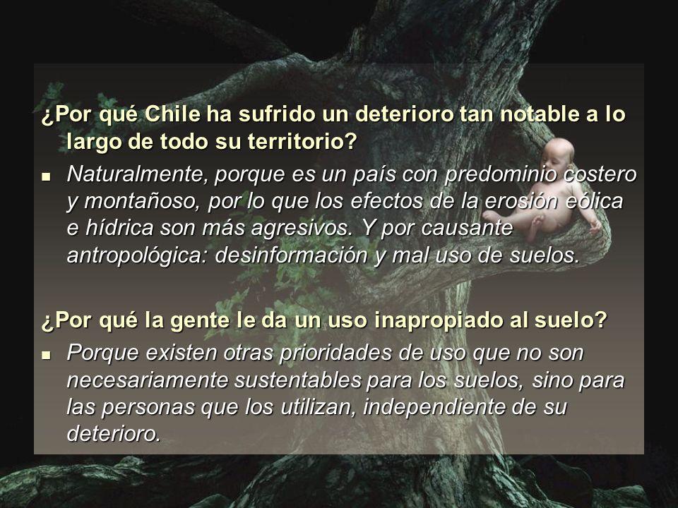 ¿Por qué Chile ha sufrido un deterioro tan notable a lo largo de todo su territorio? Naturalmente, porque es un país con predominio costero y montaños
