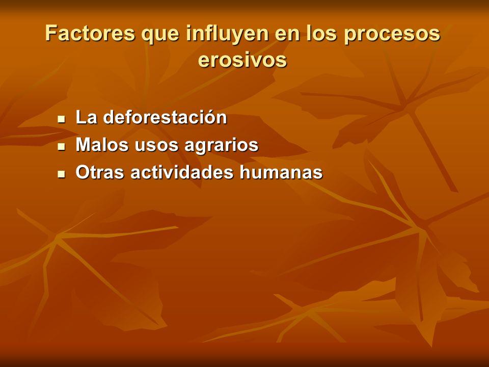 Factores que influyen en los procesos erosivos La deforestación La deforestación Malos usos agrarios Malos usos agrarios Otras actividades humanas Otr