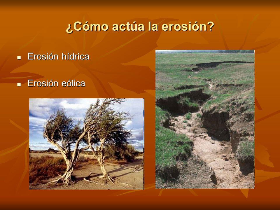 ¿Cómo actúa la erosión? Erosión hídrica Erosión hídrica Erosión eólica Erosión eólica