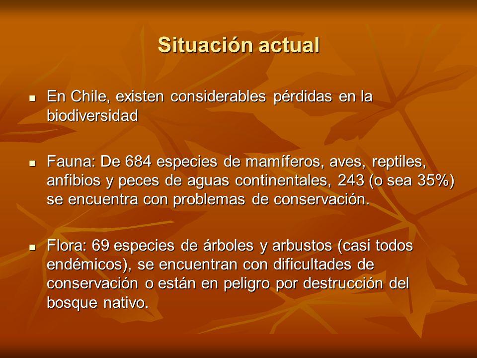 Situación actual En Chile, existen considerables pérdidas en la biodiversidad En Chile, existen considerables pérdidas en la biodiversidad Fauna: De 6