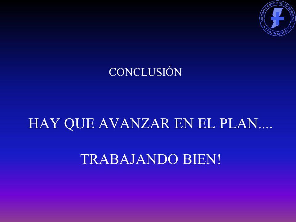 HAY QUE AVANZAR EN EL PLAN.... TRABAJANDO BIEN! CONCLUSIÓN