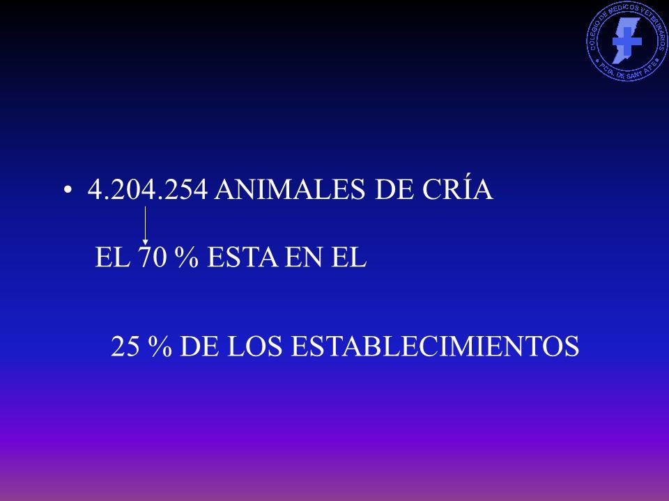 4.204.254 ANIMALES DE CRÍA EL 70 % ESTA EN EL 25 % DE LOS ESTABLECIMIENTOS