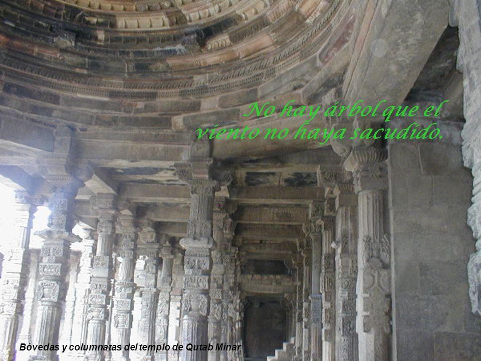 Detalle del tallado en el fuste de las columnas – Qutab Minar Cuando todo está perdido aún queda la esperanza.
