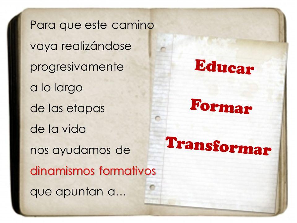 Para que este camino vaya realizándose progresivamente a lo largo de las etapas de la vida nos ayudamos de dinamismos formativos dinamismos formativos que apuntan a… Educar Formar Transformar