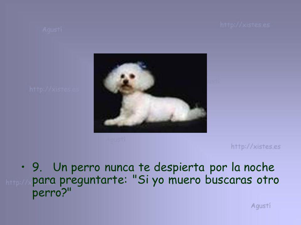 9. Un perro nunca te despierta por la noche para preguntarte: