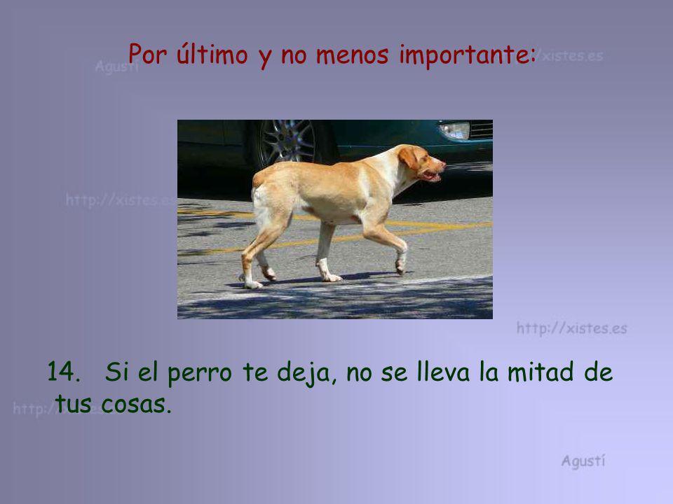 Por último y no menos importante: 14. Si el perro te deja, no se lleva la mitad de tus cosas.