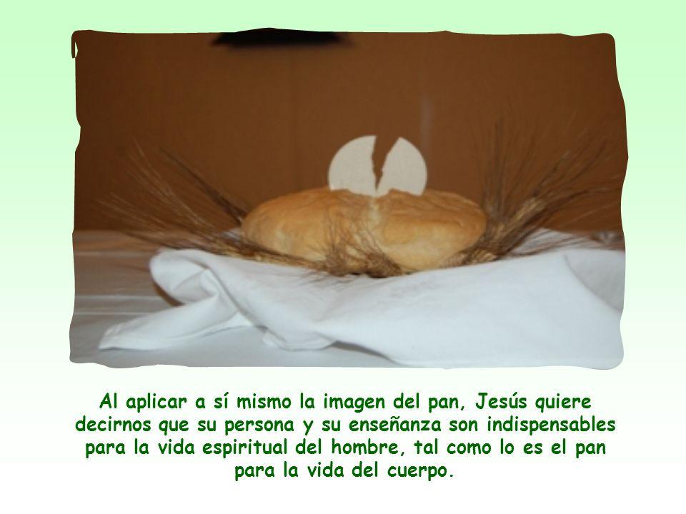 La imagen del pan aparece a menudo en la Biblia, como también la del agua. Pan y agua representan los alimentos primarios, indispensables para la vida