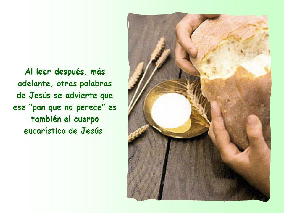 El alimento no perecedero es la persona misma de Jesús y también su enseñanza, porque la enseñanza de Jesús se identifica con su persona.