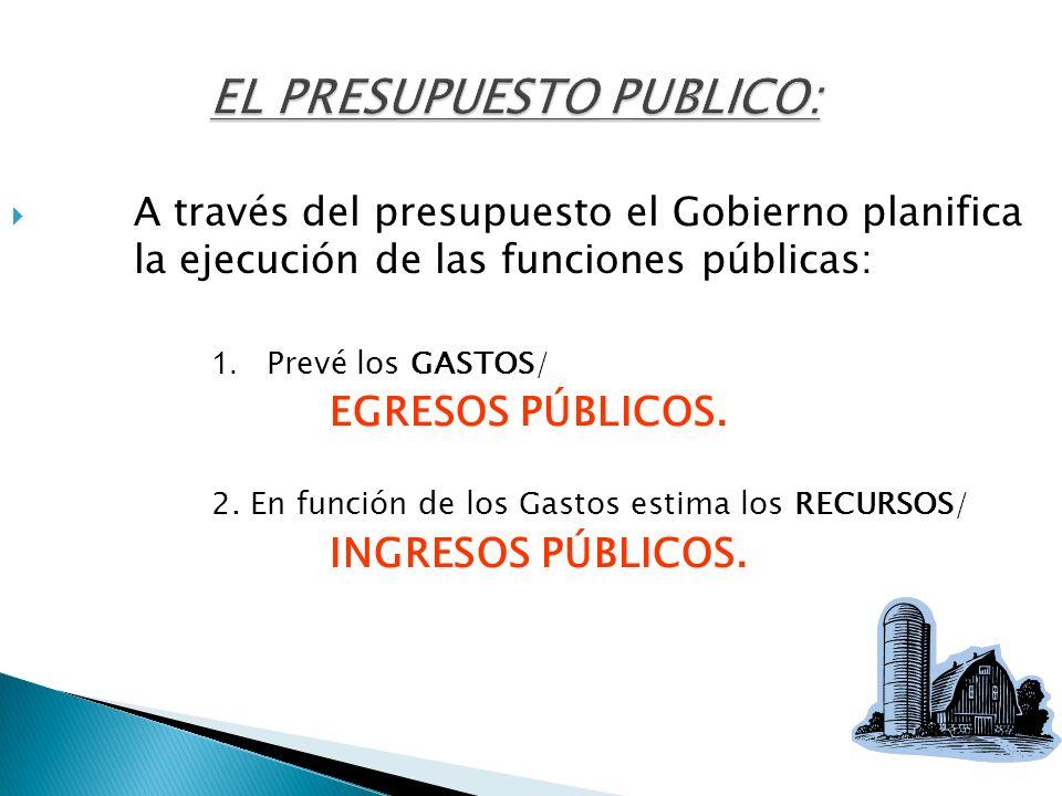 EL PRESUPUESTO PUBLICO: A través del presupuesto el Gobierno planifica la ejecución de las funciones públicas: 1. Prevé los GASTOS/ EGRESOS PÚBLICOS.