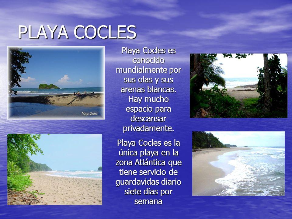 PLAYA COCLES Playa Cocles es conocido mundialmente por sus olas y sus arenas blancas. Hay mucho espacio para descansar privadamente. Playa Cocles es l