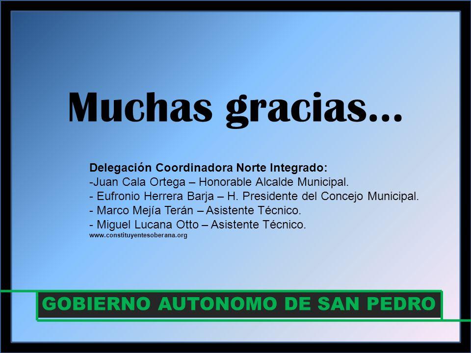 Muchas gracias… GOBIERNO AUTONOMO DE SAN PEDRO Delegación Coordinadora Norte Integrado: -Juan Cala Ortega – Honorable Alcalde Municipal.