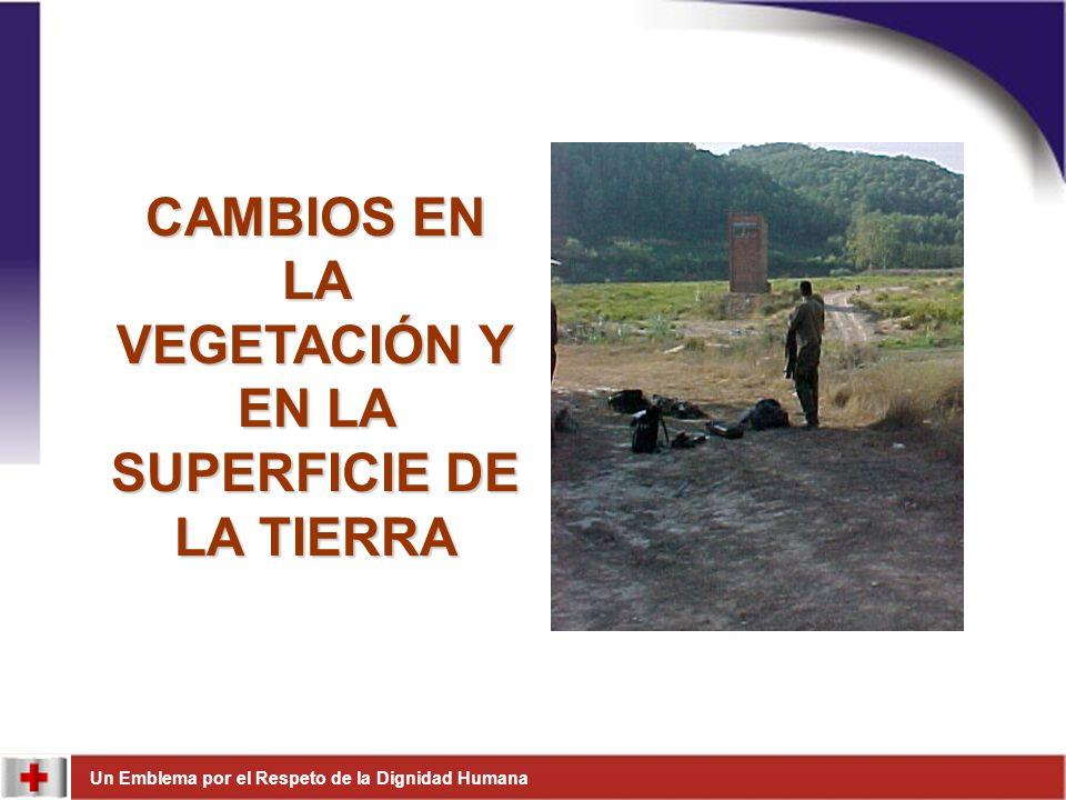 Un Emblema por el Respeto de la Dignidad Humana Verifique información disponible sobre zonas minadas.Verifique información disponible sobre zonas minadas.