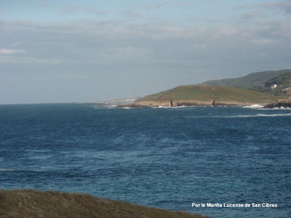 Por la isla de San Vicente, en Lekeitio