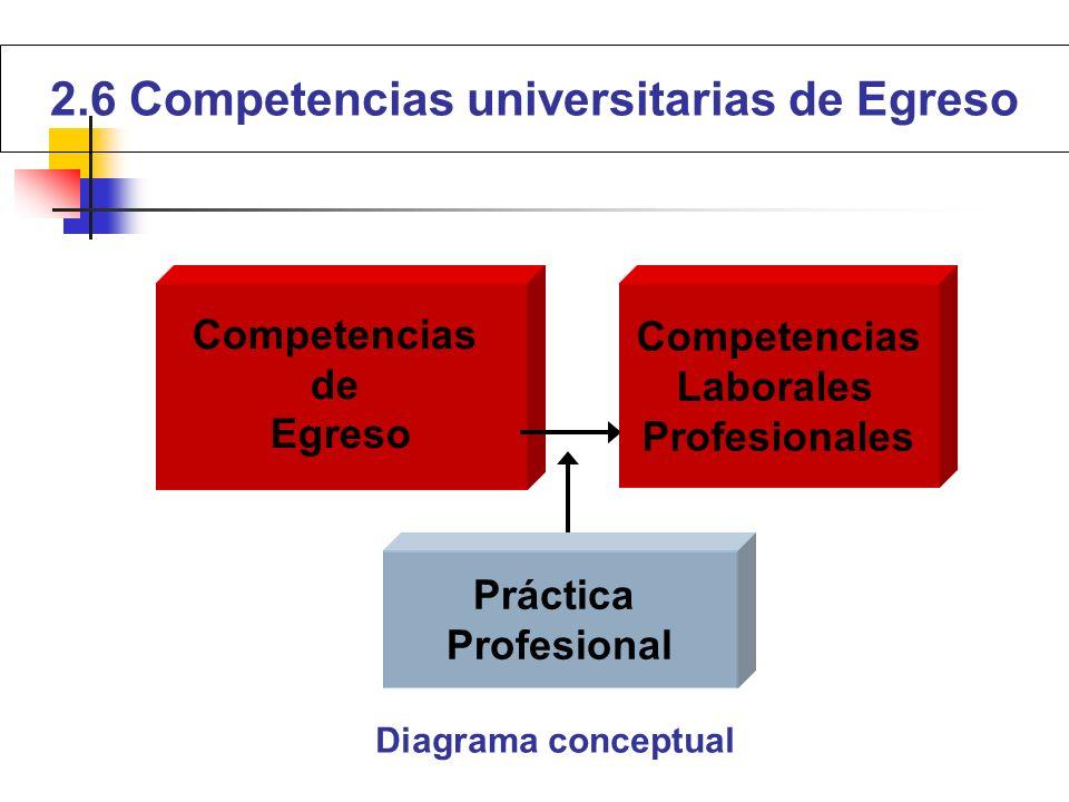 Competencias de Egreso Competencias Laborales Profesionales Práctica Profesional Diagrama conceptual 2.6 Competencias universitarias de Egreso
