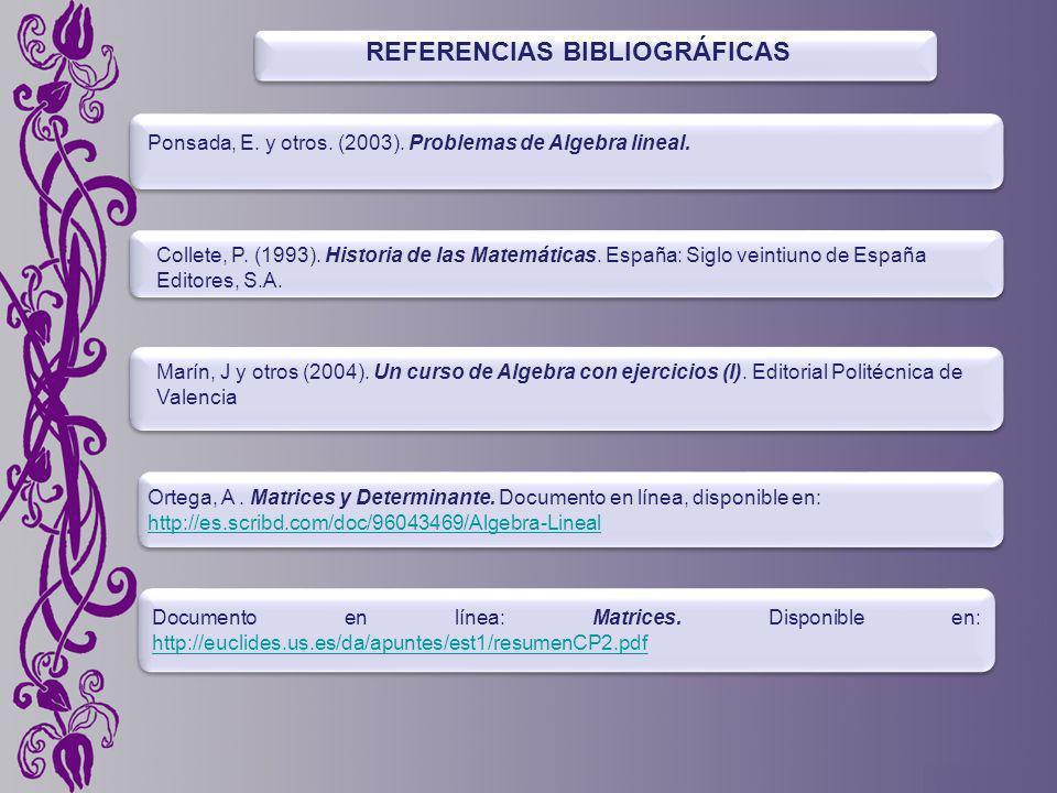 REFERENCIAS BIBLIOGRÁFICAS Ponsada, E.y otros. (2003).
