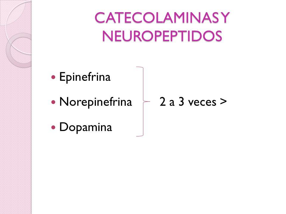 CATECOLAMINAS Y NEUROPEPTIDOS Epinefrina Norepinefrina 2 a 3 veces > Dopamina