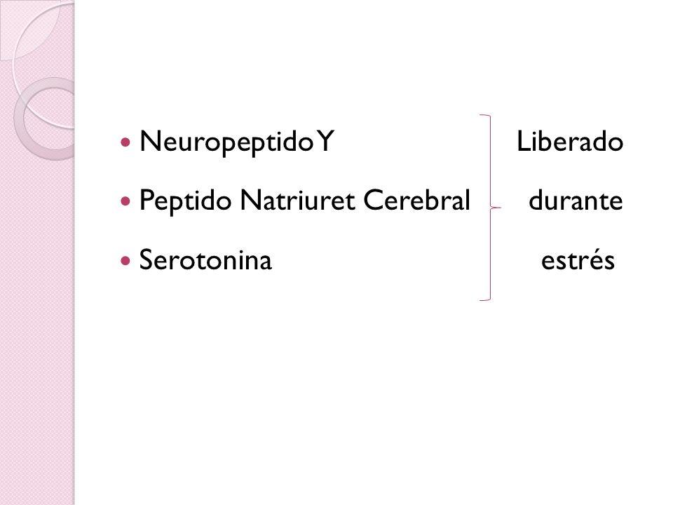 Neuropeptido YLiberado Peptido Natriuret Cerebral durante Serotonina estrés