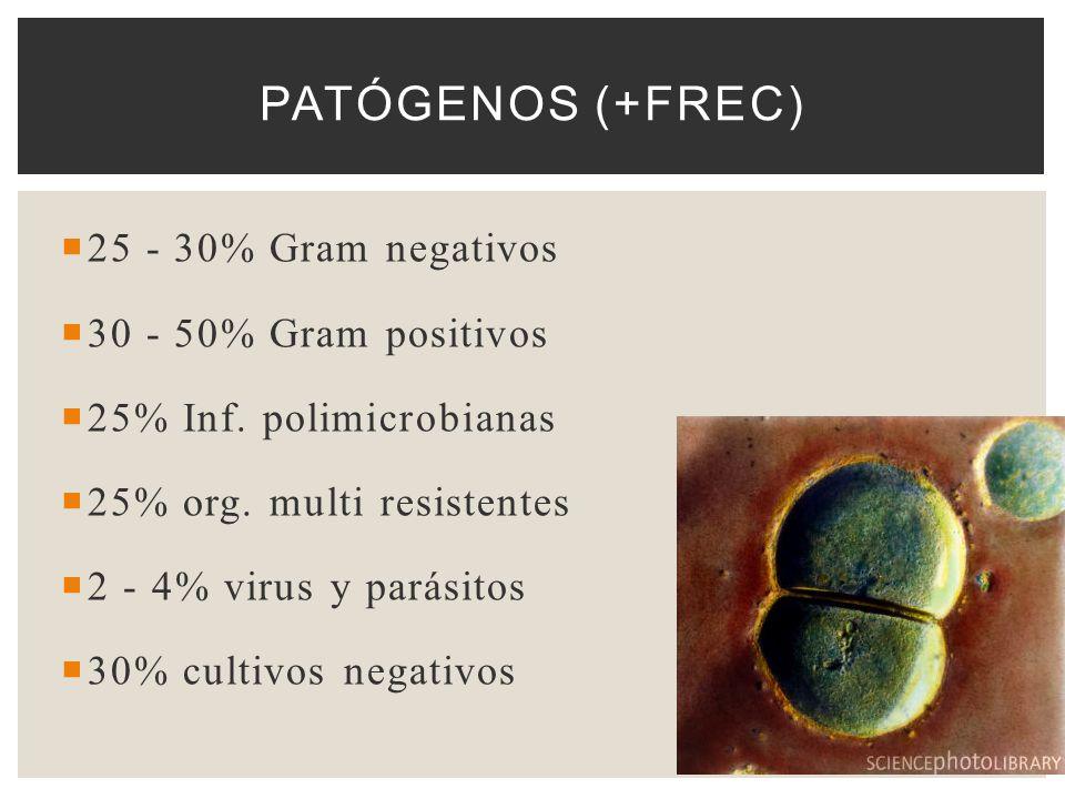 25 - 30% Gram negativos 30 - 50% Gram positivos 25% Inf. polimicrobianas 25% org. multi resistentes 2 - 4% virus y parásitos 30% cultivos negativos PA