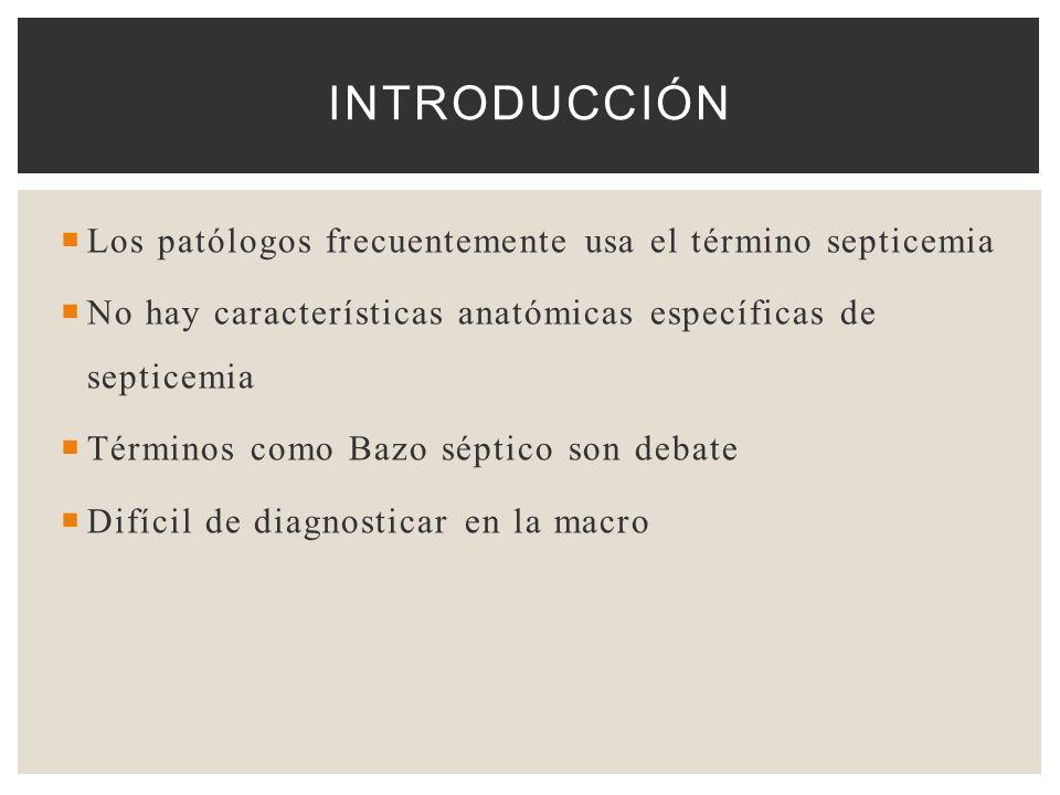 Los patólogos frecuentemente usa el término septicemia No hay características anatómicas específicas de septicemia Términos como Bazo séptico son deba
