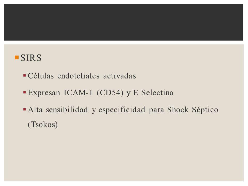 SIRS Células endoteliales activadas Expresan ICAM-1 (CD54) y E Selectina Alta sensibilidad y especificidad para Shock Séptico (Tsokos)