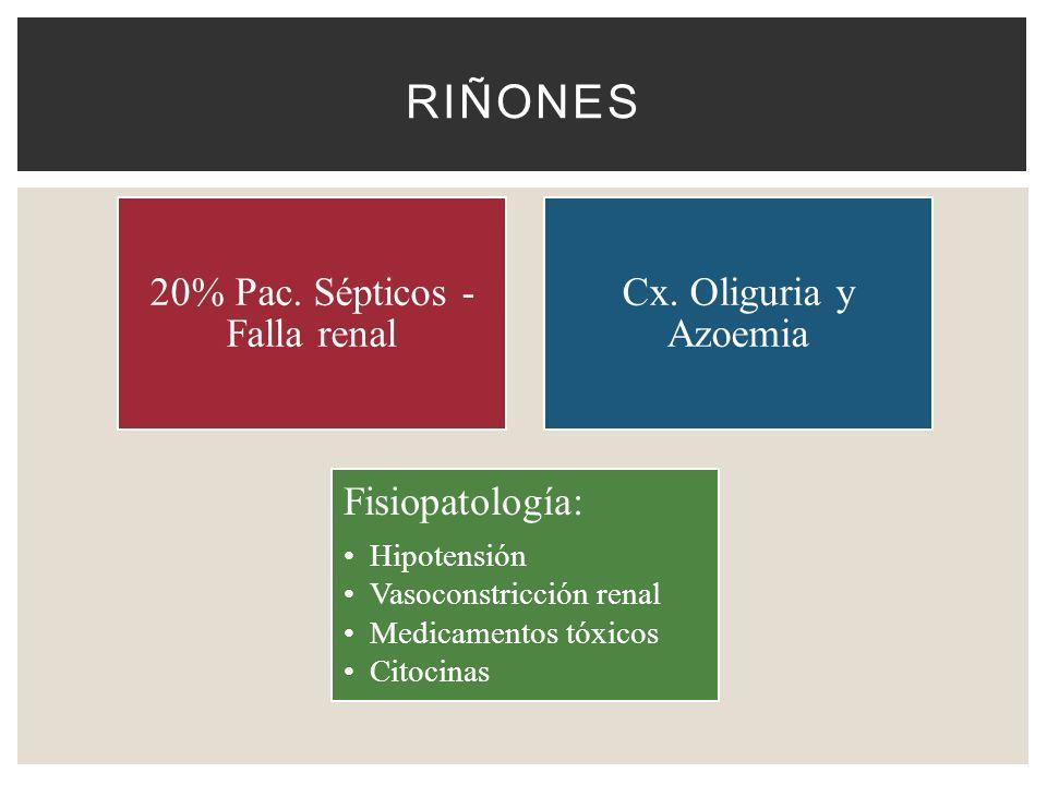 RIÑONES 20% Pac. Sépticos - Falla renal Cx. Oliguria y Azoemia Fisiopatología: Hipotensión Vasoconstricción renal Medicamentos tóxicos Citocinas