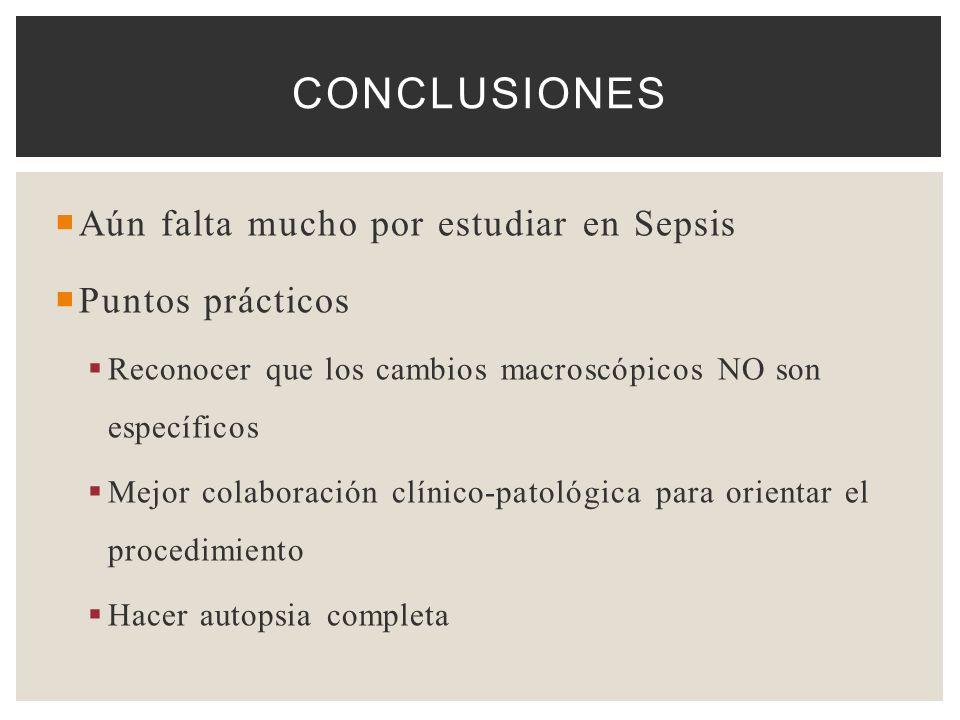 Aún falta mucho por estudiar en Sepsis Puntos prácticos Reconocer que los cambios macroscópicos NO son específicos Mejor colaboración clínico-patológi