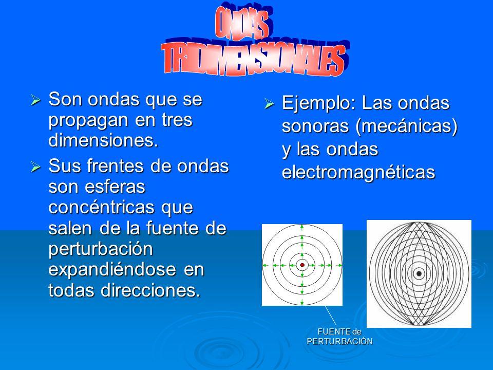 Se propagan en una sola dirección del espacio (ej: las ondas en los resortes o en las cuerdas). Se propagan en una sola dirección del espacio (ej: las