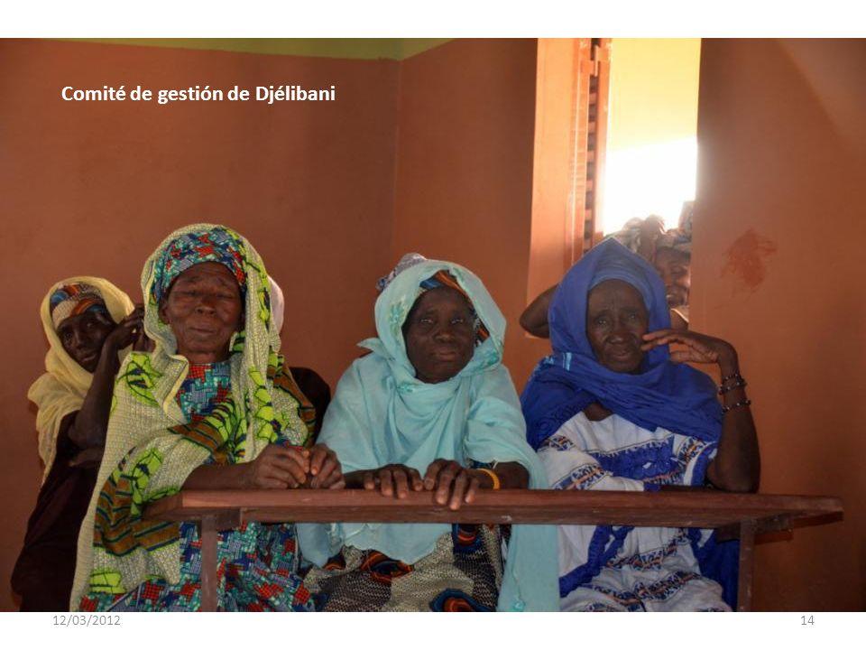 12/03/201213 Comité de gestión de Djélibani