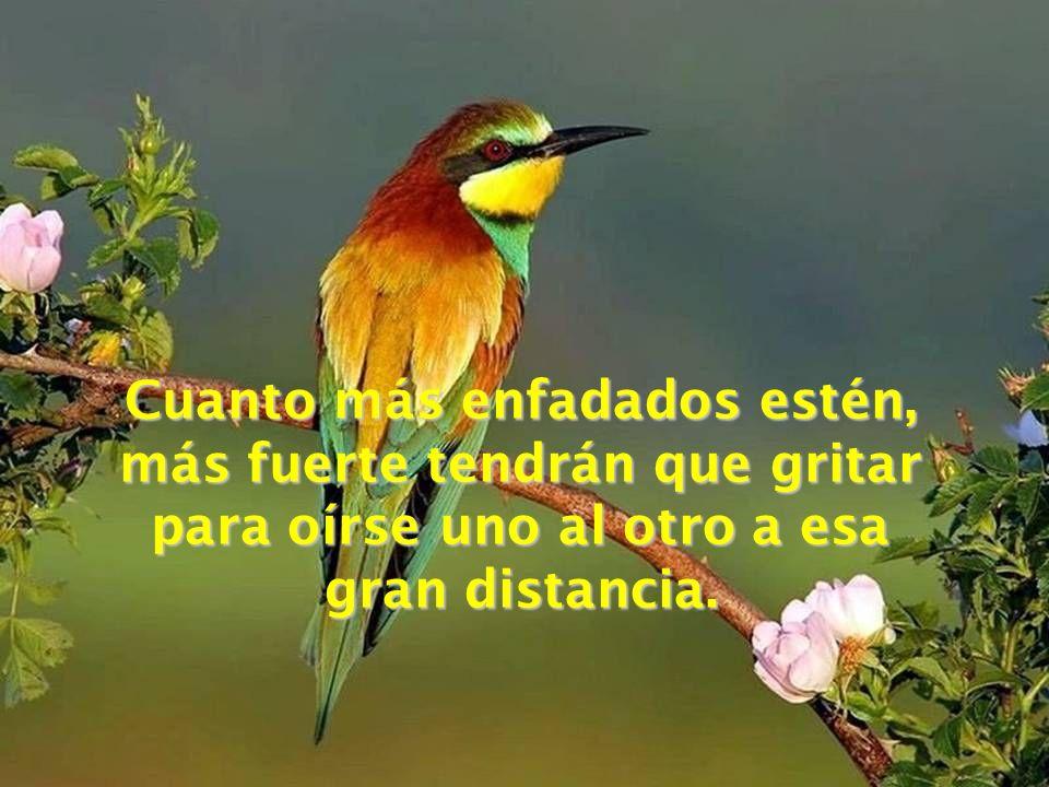 Es que, cuando dos personas están enfadadas, sus corazones están muy distanciados. Para cubrir esa distancia necesitan gritar para poder escucharse mu