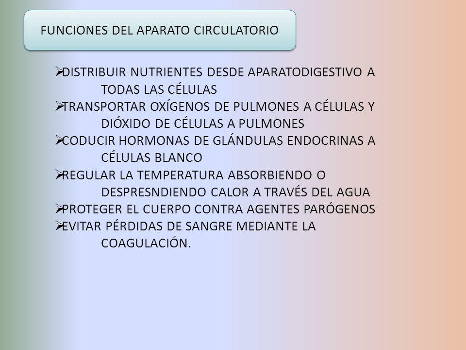 DISTRIBUIR NUTRIENTES DESDE APARATODIGESTIVO A TODAS LAS CÉLULAS TRANSPORTAR OXÍGENOS DE PULMONES A CÉLULAS Y DIÓXIDO DE CÉLULAS A PULMONES CODUCIR HO