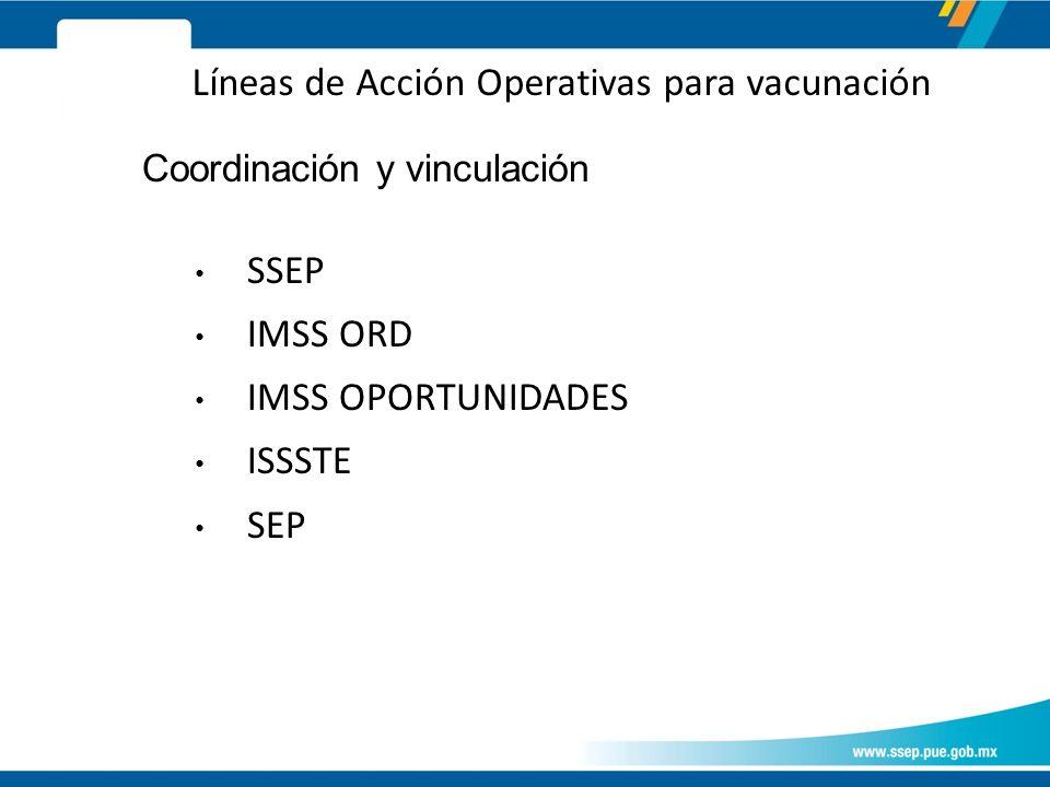 Coordinación y vinculación SSEP IMSS ORD IMSS OPORTUNIDADES ISSSTE SEP Líneas de Acción Operativas para vacunación