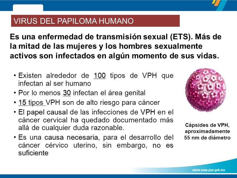 Es una enfermedad de transmisión sexual (ETS).