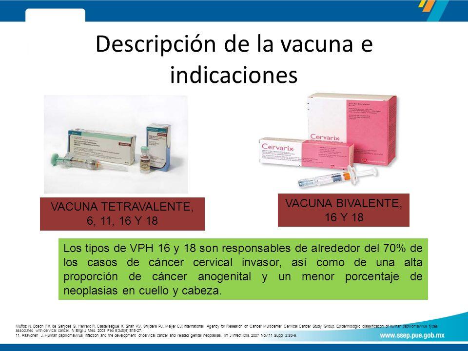Descripción de la vacuna e indicaciones VACUNA BIVALENTE, 16 Y 18 VACUNA TETRAVALENTE, 6, 11, 16 Y 18 Los tipos de VPH 16 y 18 son responsables de alrededor del 70% de los casos de cáncer cervical invasor, así como de una alta proporción de cáncer anogenital y un menor porcentaje de neoplasias en cuello y cabeza.